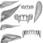 Уши и зубы эльфов