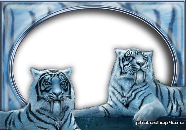 Саблезубые тигры