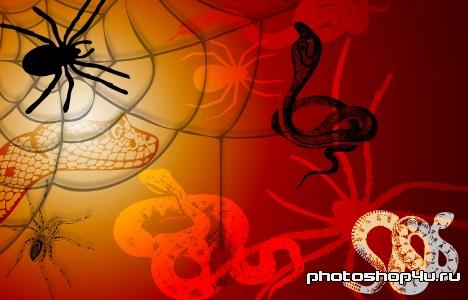 http://photoshop4u.ru/uploads/posts/2011-02/1298714319_snakes_spiders.jpg