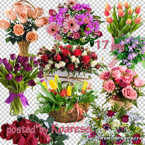 Png клипарт для фотошопа - Цветочные букеты